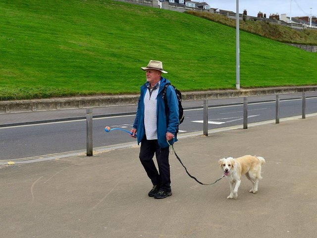Fresh air and exercise is an added bonus of taking the dog for a walk