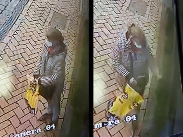 The woman was caught on CCTV several times checking the coast was clear before helping herself to the restaurant's plant boxes