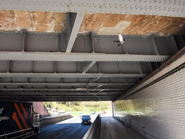 Pigeons can now roost safely underneath Devonshire Road bridge, as dangerous netting was removed by Blackpool Council following a plea from Brambles Wildlife Rescue. Photo: Daniel Martino/JPI Media