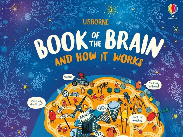 The Usborne Book of the Brain and How It Works