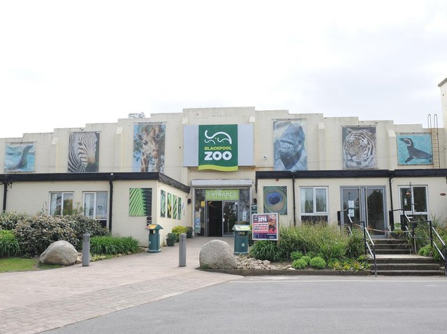 Blackpool Zoo is a family friendly attraction, providing fun and education for all ages.