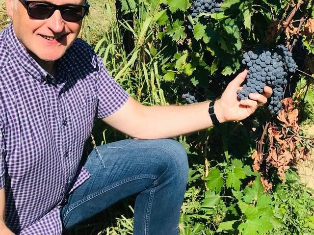 Mark Jarman, Morrisons' senior wine sourcing manager