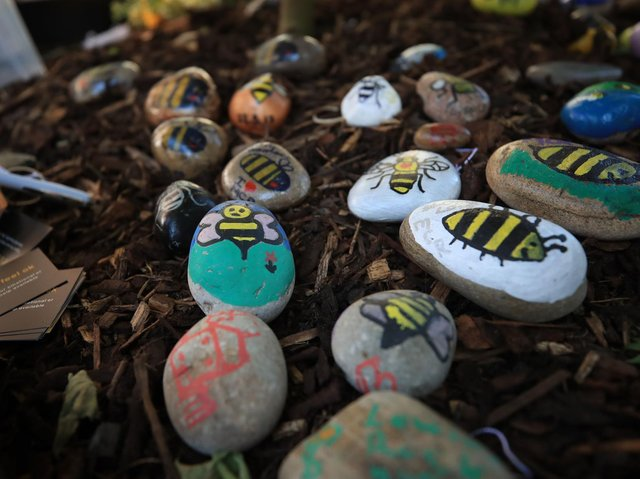 Bees painted on stones left in tribute to all the victims of the Manchester Arena terror attack placed in Manchester.
