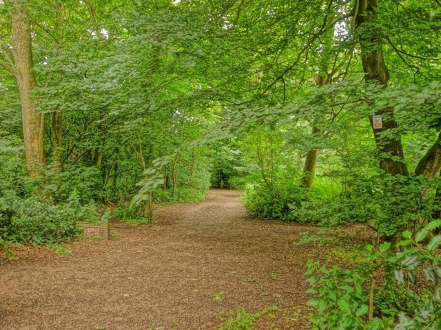 The 58-year-old is charged with two cases of indecent exposure after allegedly 'flashing' at walkers in Witch Wood, Lytham on Wednesday, June 2. Pic credit: Kate Yates