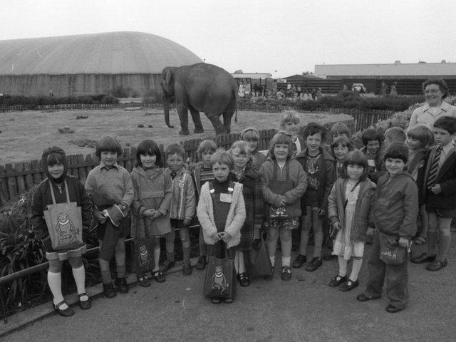 Blackpool Zoo in 1979